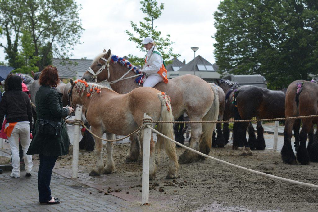 ringsteken ringrijden kapelle groos op zeeland zak van zuid-beveland paarden knollen paardrijden
